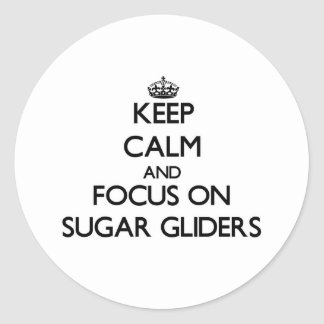 Keep calm and focus on Sugar Gliders Classic Round Sticker