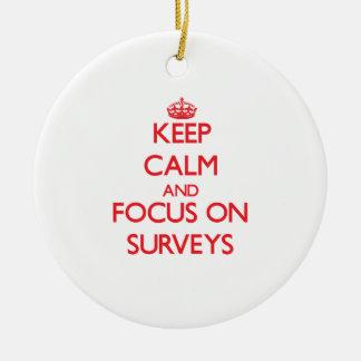 Keep Calm and focus on Surveys Ornament