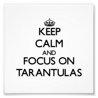 Keep Calm and focus on Tarantulas Photographic Print