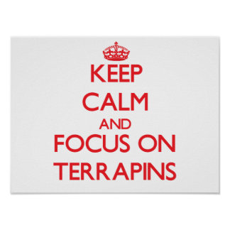 Keep calm and focus on Terrapins Poster
