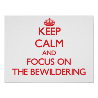 Keep Calm and focus on The Bewildering Posters