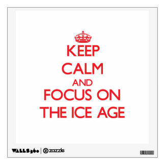 Keep Calm and focus on The Ice Age Room Decals