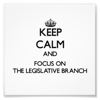 Keep Calm and focus on The Legislative Branch Art Photo