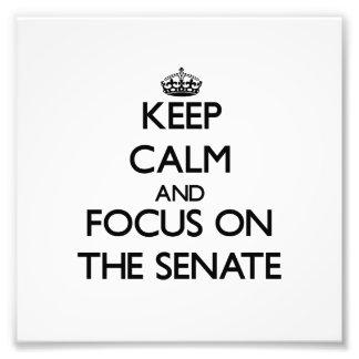 Keep Calm and focus on The Senate Photo