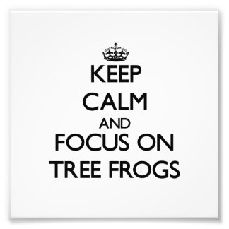 Keep calm and focus on Tree Frogs Art Photo