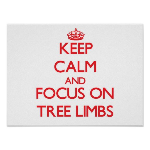 Keep Calm and focus on Tree Limbs Posters