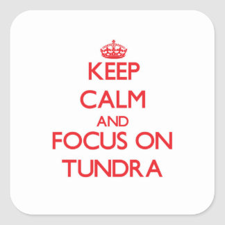 Keep Calm and focus on Tundra Square Stickers