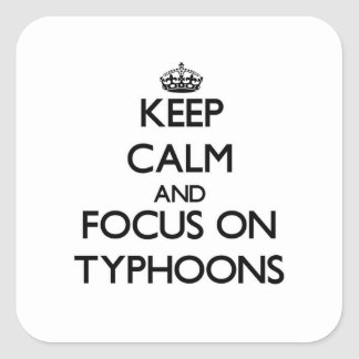Keep Calm and focus on Typhoons Stickers