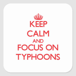 Keep Calm and focus on Typhoons Square Sticker