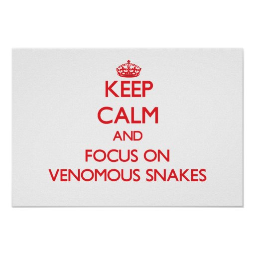 Keep calm and focus on Venomous Snakes Posters