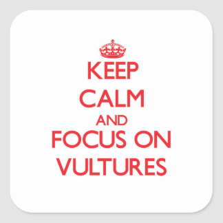 Keep Calm and focus on Vultures Square Sticker
