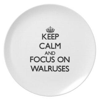 Keep Calm and focus on Walruses Plate