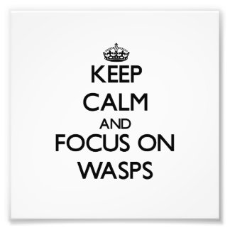 Keep calm and focus on Wasps Photo