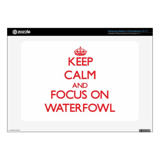 Keep calm and focus on Waterfowl Samsung Chromebook Skins