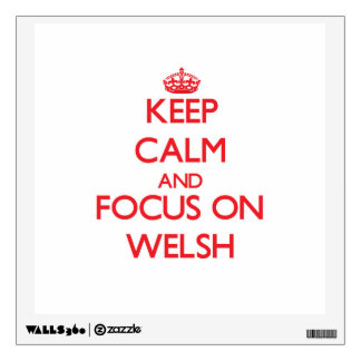 Keep Calm and focus on Welsh Room Graphics