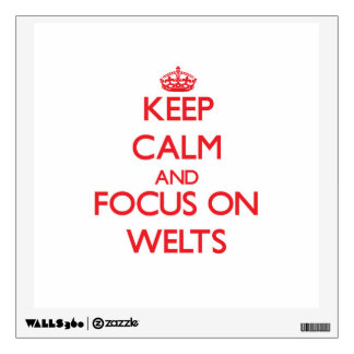 Keep Calm and focus on Welts Wall Graphics