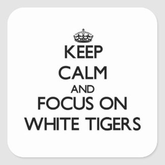 Keep calm and focus on White Tigers Square Sticker