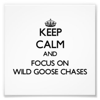 Keep Calm and focus on Wild Goose Chases Photo