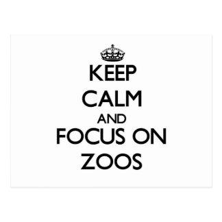 Keep Calm and focus on Zoos Postcard