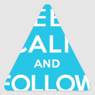Keep Calm And Follow Me Carry On Twitter Bird Triangle Sticker