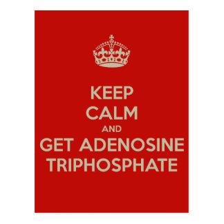 Keep Calm and Get Adenosine Triphosphate Postcard