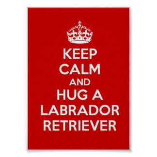 Keep Calm and Hug a Labrador Retriever Poster