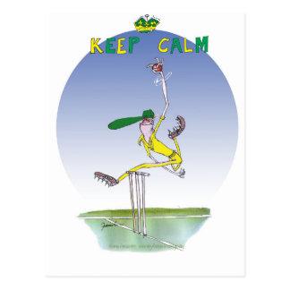 keep calm and hurl the ball, tony fernandes postcard