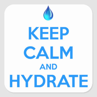 Keep Calm And Hydrate Square Sticker