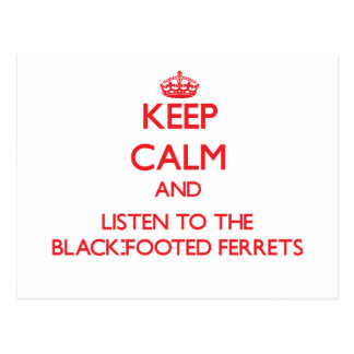 Keep calm and listen to the Black-Footed Ferrets Post Cards