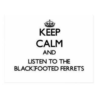 Keep calm and Listen to the Black-Footed Ferrets Postcards