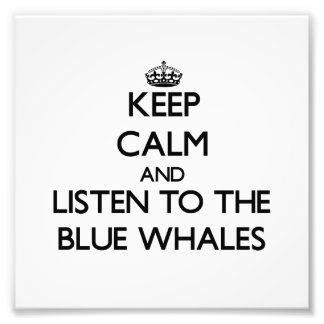 Keep calm and Listen to the Blue Whales Art Photo