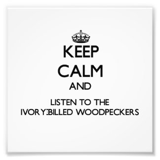 Keep calm and Listen to the Ivory-Billed Woodpecke Art Photo