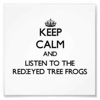 Keep calm and Listen to the Red-Eyed Tree Frogs Photo