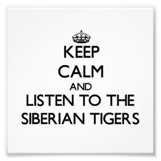 Keep calm and Listen to the Siberian Tigers Photo Art