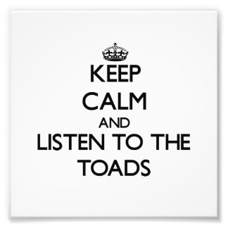 Keep calm and Listen to the Toads Photographic Print