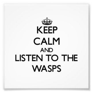 Keep calm and Listen to the Wasps Photo Art