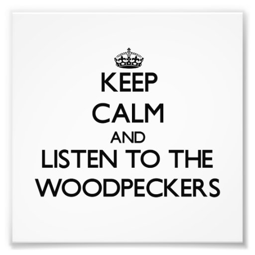 Keep calm and Listen to the Woodpeckers Photo Art