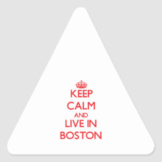 Keep Calm and Live in Boston Triangle Sticker