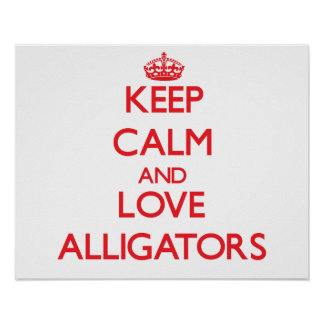 Keep calm and love Alligators Poster
