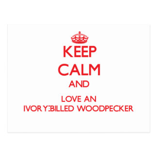 Keep calm and love an Ivory-Billed Woodpecker Postcard