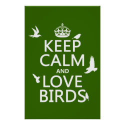 Matte Poster with Keep Calm and Love Birds design