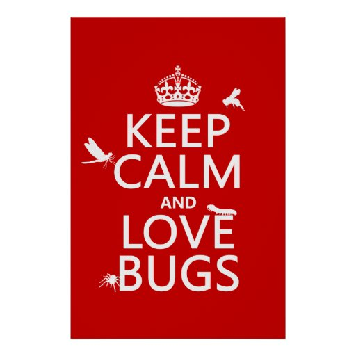 Keep Calm and Love Bugs (any background color) Poster