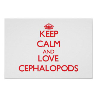 Keep calm and love Cephalopods Poster