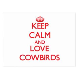 Keep calm and love Cowbirds Post Card