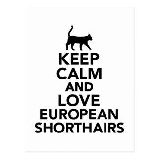 Keep calm and love European Shorthair cats Postcard