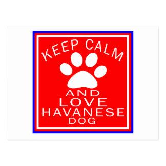 Keep Calm And Love Havanese Postcard