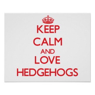 Keep calm and love Hedgehogs Posters