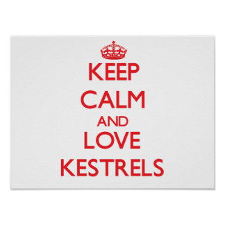 Keep calm and love Kestrels Poster