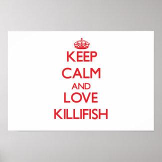 Keep calm and love Killifish Poster