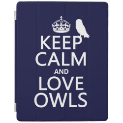 iPad 2/3/4 Cover with Keep Calm and Love Owls design